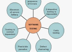 What are the 7 Basic Software Testing Principles?