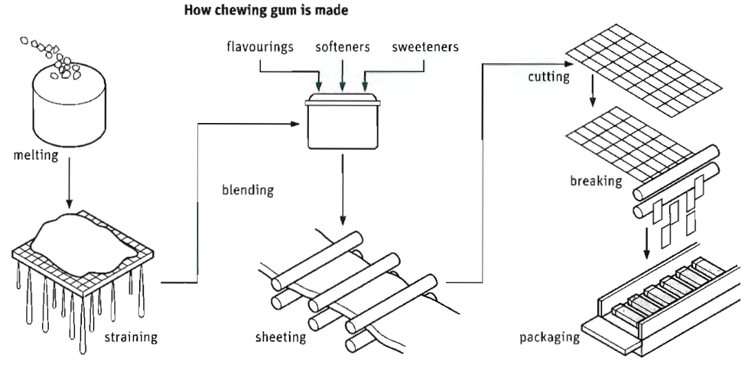 Describing Process of Making Chewing Gum (Revise