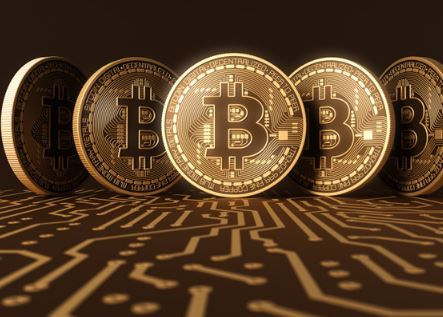 Bitcoin mogul South Africa