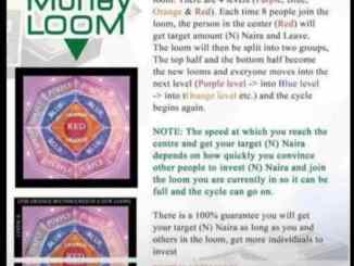 Loom Ponzi Scheme