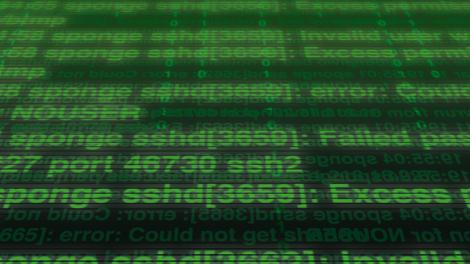 Adobe to plug Hacking Team Zero Day Flash vulnerability