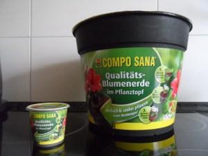 COMPO SANA Qualitäts-Blumenerde im Pflanztopf (2)