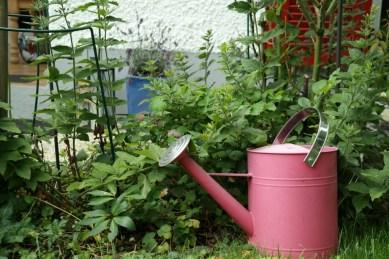 Giesskanne im Garten (Bildassistent: Natur)