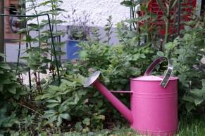 Giesskanne im Garten (Bildassistent: Kühl)
