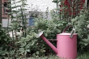 Giesskanne im Garten (Bildassistent: Ruhig)