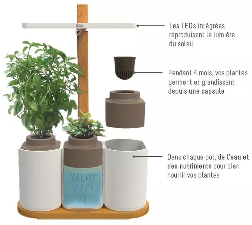 Listo para crecer - Smart Lilo, el huerto de interior independiente Listo para crecer - descripción
