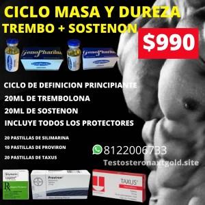 Ciclo de Masa y Dureza Trembolona y Sostenon con Protectores