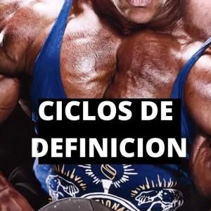 Ciclos de Definición