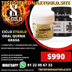 CICLO XT GOLD COBRA ORAL POTENTE QUEMA GRASA