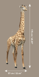 153941 XXXL GIRAFE DOUBLE COUPE E