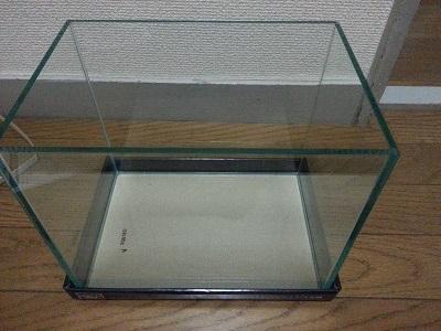 メダカ水槽 (4)
