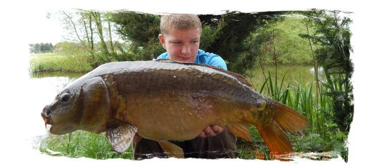 Mirror carp cheshire