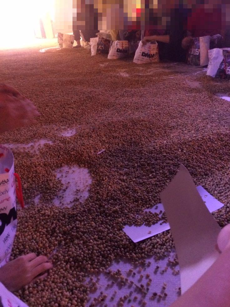 すごい豆まきはホントにすごかった!すごい豆まき2015に行ってきたよ。 #すごい豆まき2015