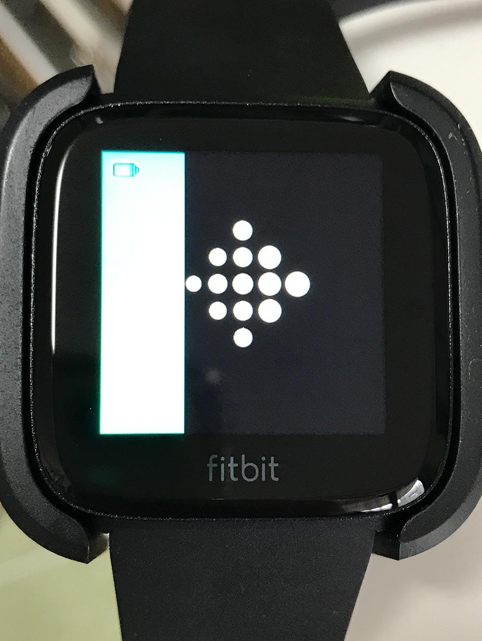 Fitbit Versaを買って数日たったので感想を書いてみる