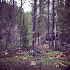 Teton-Valley-Decoster-Trail-01