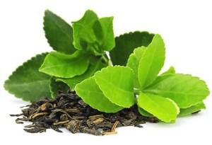 Tetrogen  Image of visual green tea