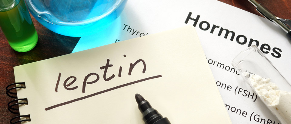 Tetrogen  Image of visual leptin