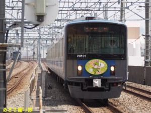 P8090122