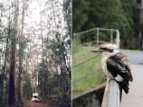 Australia_deLUX-1482_2-horz