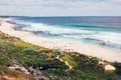 Australia_deLUX-9968