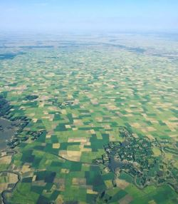 Gojjam teff farm from air