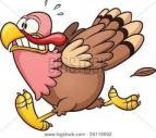 scared_turkey
