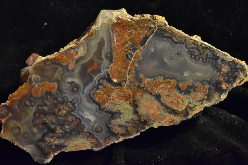 Rock #1376
