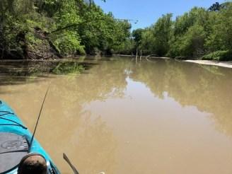 Harmon Creek 2017, from David D, 1