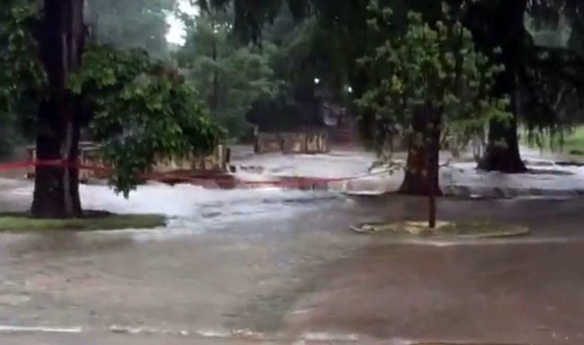 The San Antonio Zoo Floods But Animals Are Safe