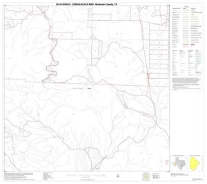 2010 Census County Block Map: Brewster County, Block 74