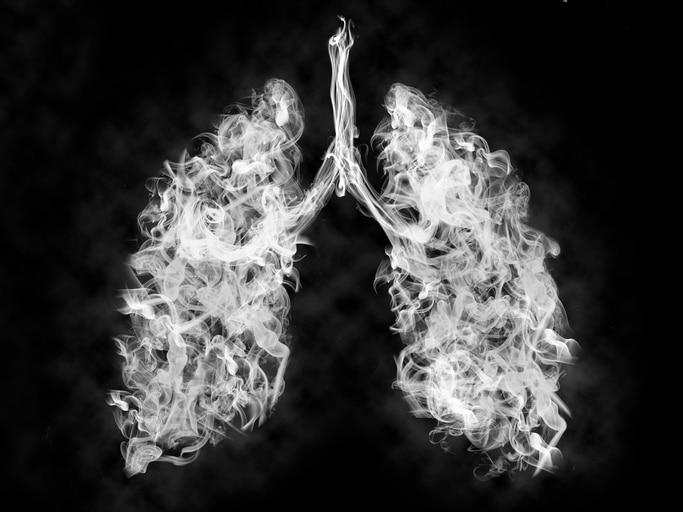 vapor in shape of lungs