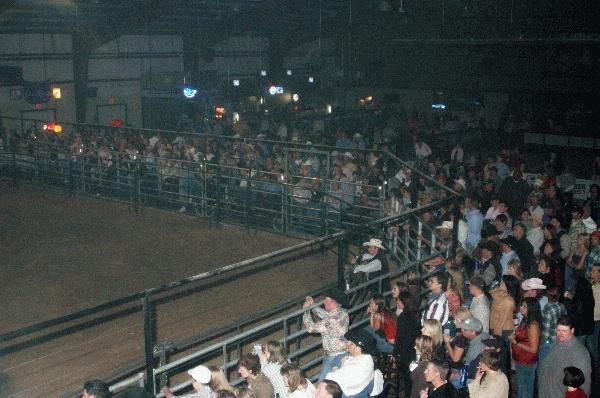 Bull Riding Photos