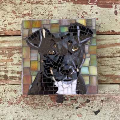 DeniseMosaics-Pet Portraits Dog Display Gallery 10