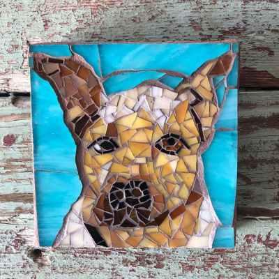 DeniseMosaics-Pet Portraits Dog Display Gallery 15