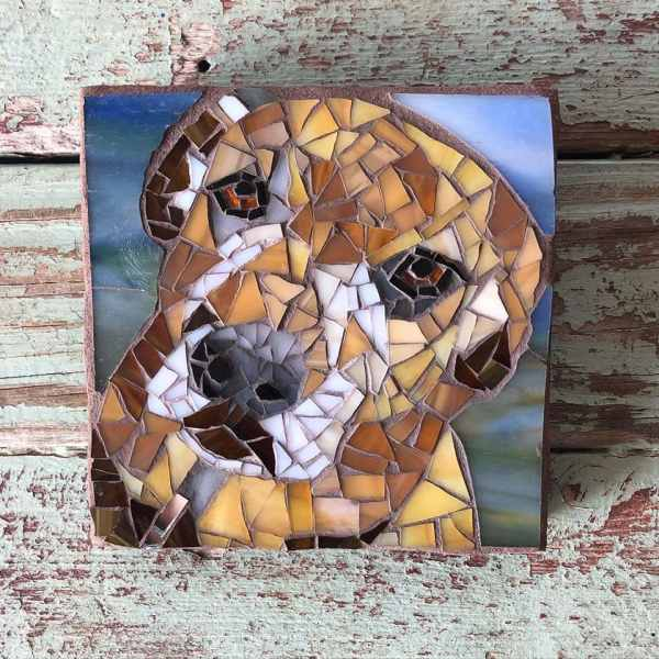 DeniseMosaics-Pet Portraits Dog Display Gallery 2