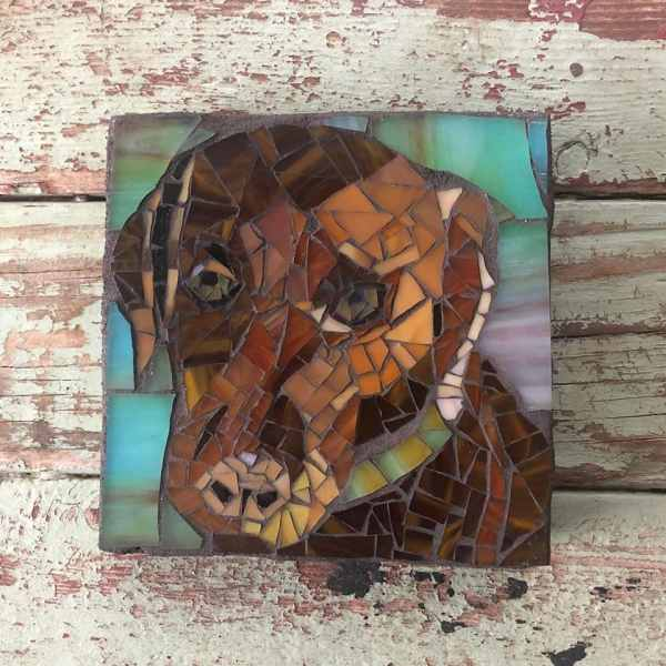 DeniseMosaics-Pet Portraits Dog Display Gallery 4