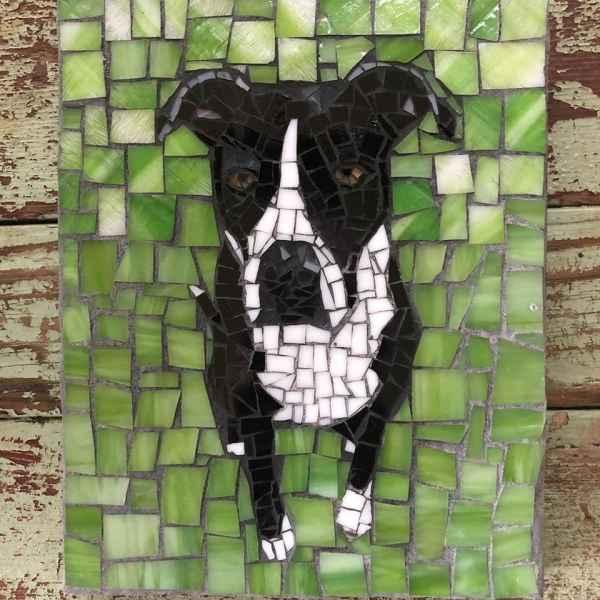 DeniseMosaics-Pet Portraits Dog Display Gallery 7