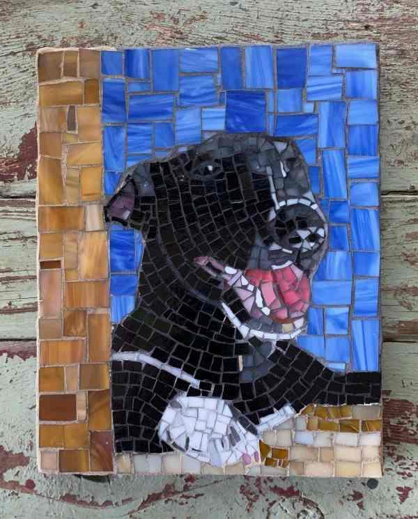 Texas Pet Co Pet Mosaic 8x10 3