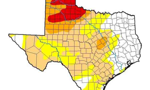 Record February Rains Conquers Drought in East Texas