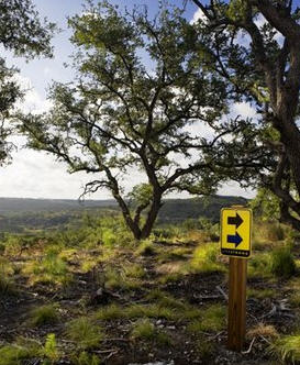 lance-armstong-hill-country-retreat-4