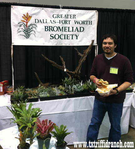Greater Dallas-Fort Worth Bromeliad Society