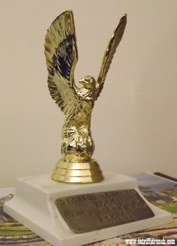 Diorama-O-Rama 2009 Trophy