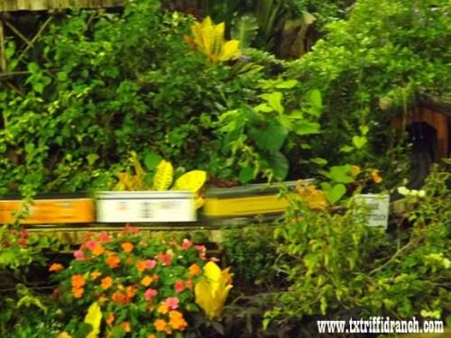 Greenhouse train
