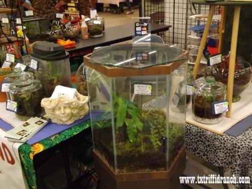 Texas Triffid Ranch booth - de Marigny display