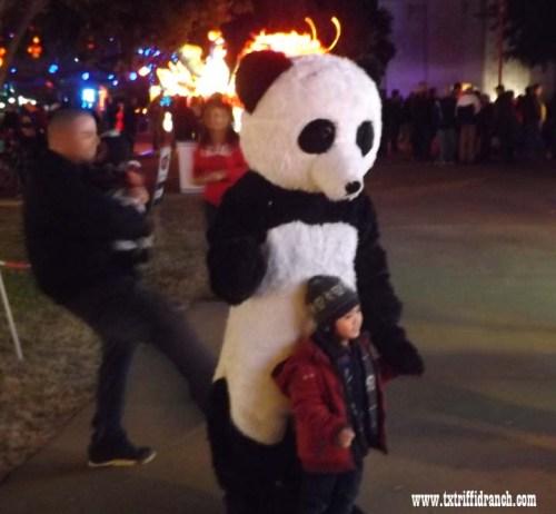 Chinese Lantern Festival - Panda
