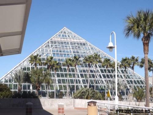 Moody Gardens pyramid