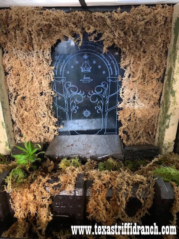 Doors of Durin carnivorous plant enclosure