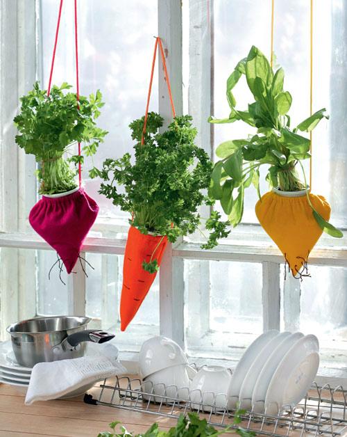Πώς να διακοσμήσετε την κουζίνα σας με βότανα
