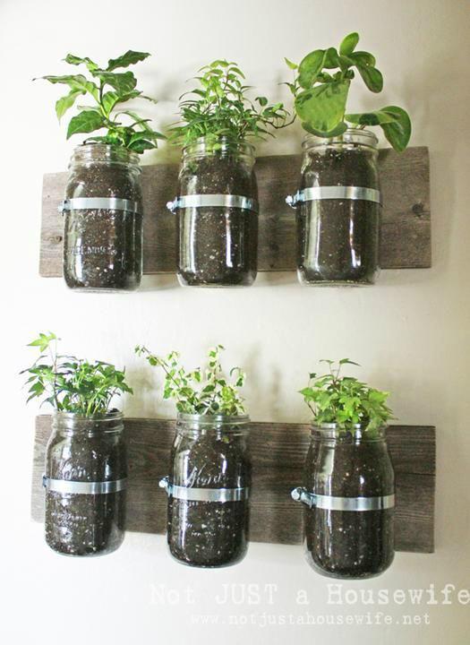 Πώς να διακοσμήσετε την κουζίνα σας με βότανα14