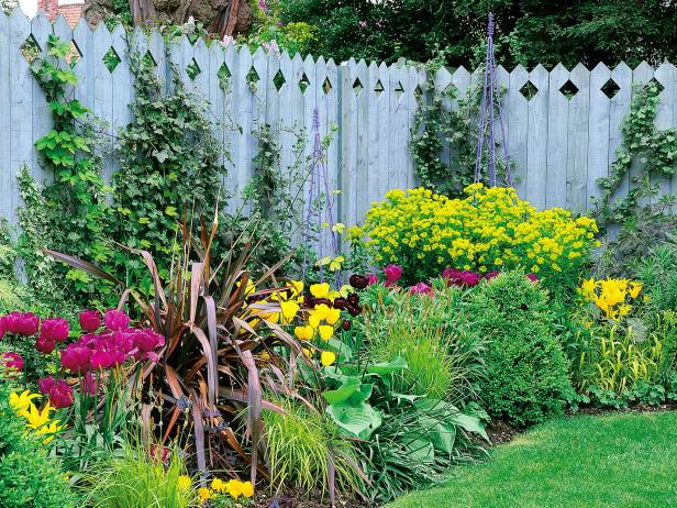Είδη για φράχτες Κήπου
